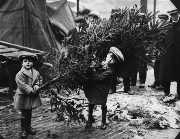 Boys「Christmas Tree」:写真・画像(18)[壁紙.com]