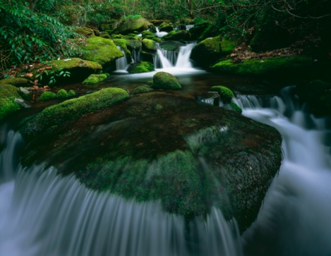 Roaring Fork River「Moss And Curved Cascade In The Roaring Fork River In Great Smoky Mountains National Park」:スマホ壁紙(15)