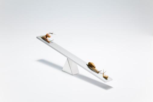 カタツムリ「snail on the  seesaw」:スマホ壁紙(10)