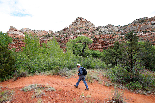 National Park「Two Utah National Momments Under Review By Deparetment of Interior」:写真・画像(5)[壁紙.com]
