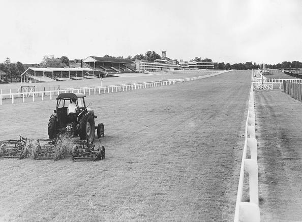 Sports Track「Grass Cutter」:写真・画像(7)[壁紙.com]