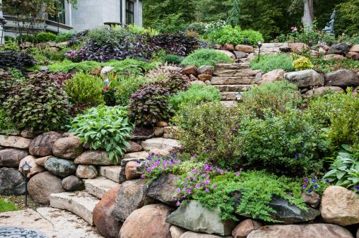 Ornamental Garden「Stone Steps in the Garden」:スマホ壁紙(2)