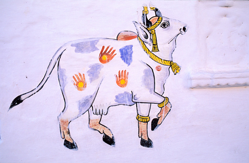 Rajasthan「Wall painting of a cow」:スマホ壁紙(13)