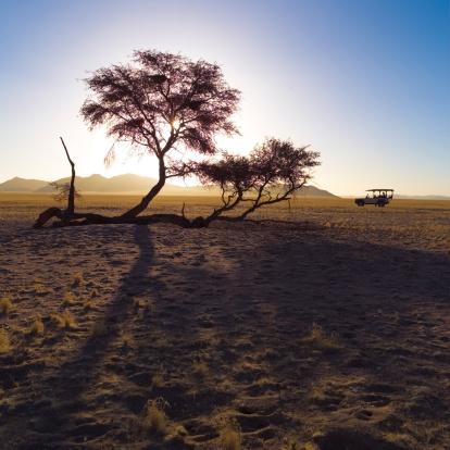 Kalahari Desert「Vehicle driving in the desert in Namibia, Africa」:スマホ壁紙(11)