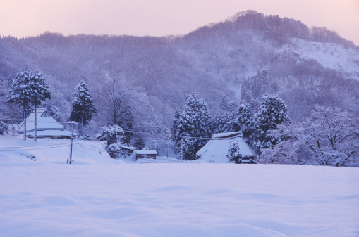 雪「Rural Landscape During Winter Morning」:スマホ壁紙(13)