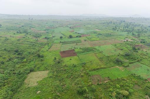 コンゴ民主共和国「Rural landscape near Bunia, Ituri Province, Democratic Republic of the Congo」:スマホ壁紙(19)
