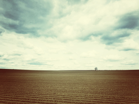 Plowed Field「Rural landscape with a plowed field and a lonely tree at the horizon,Vlaams Brabant,Flanders,Belgium」:スマホ壁紙(5)