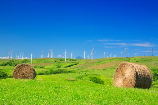 農業「Rural Landscape with Haybales and Wind Turbines」:スマホ壁紙(19)