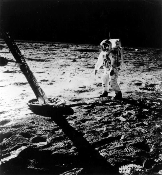 月「Moon Buzz」:写真・画像(5)[壁紙.com]