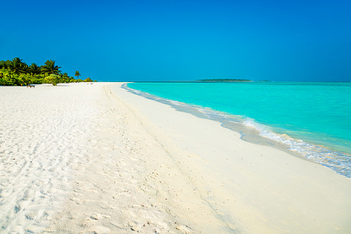 豪華 ビーチ「Dhiffushi 休日の島、南アリ環礁、モルディブで熱帯の楽園」:スマホ壁紙(3)