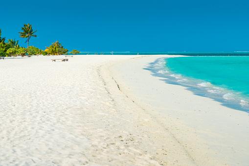 モルディブ「Dhiffushi 休日の島、南アリ環礁、モルディブで熱帯の楽園」:スマホ壁紙(19)