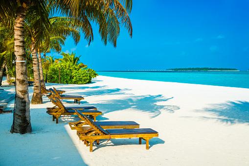 モルディブ「Dhiffushi 休日の島、南アリ環礁、モルディブで熱帯の楽園」:スマホ壁紙(17)