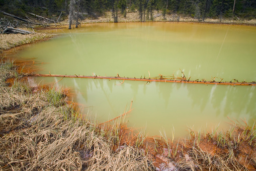 Yoho National Park「Details Of One Of The Paint Pots In Yoho National Park Bc – Iron-Rich Mineral Springs Bubble Up Through Small Pools, Staining The Earth A Deep Ochre, Canada, British Columbia, Yoho National Park」:スマホ壁紙(2)