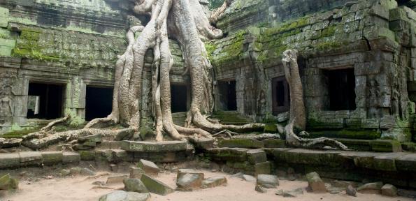 Ruined「Banyan Tree Roots At Ta Prohm Temple, Angkor Wat, Cambodia」:スマホ壁紙(4)