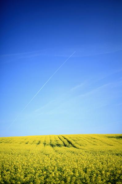 太陽の光「Price Of Farmland Rising Faster Than Prime London Property」:写真・画像(7)[壁紙.com]