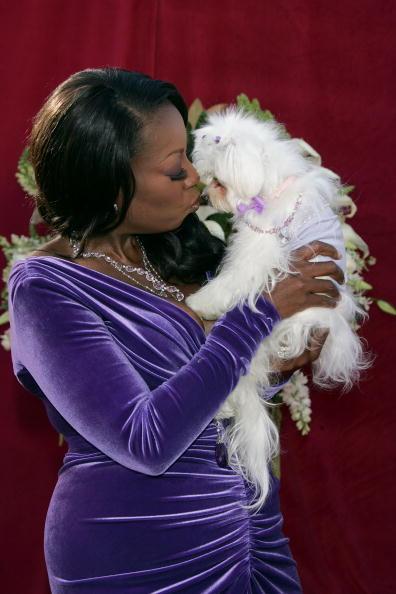 Pet Owner「57th Annual Emmy Awards - Arrivals」:写真・画像(6)[壁紙.com]