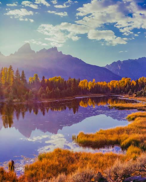 Snake River with aspens  in Autumn at Grand Teton National Park:スマホ壁紙(壁紙.com)