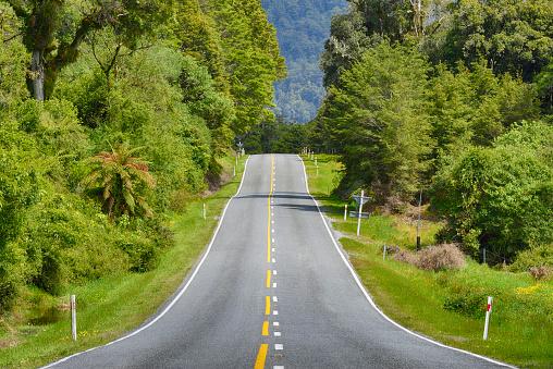 Mountain Pass「Haast Pass (Highway 6), road through rainforest.」:スマホ壁紙(17)
