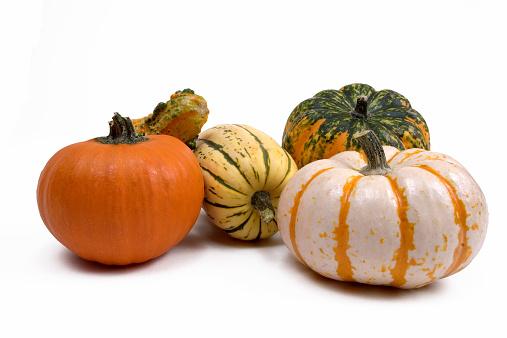 Gourd「Decorative Gourds」:スマホ壁紙(13)