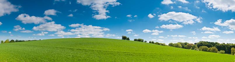 Rolling Landscape「Perfect summer landscape vibrant background panorama」:スマホ壁紙(6)