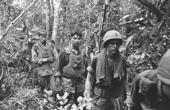 Rainforest「Patrol In Jungle」:写真・画像(14)[壁紙.com]