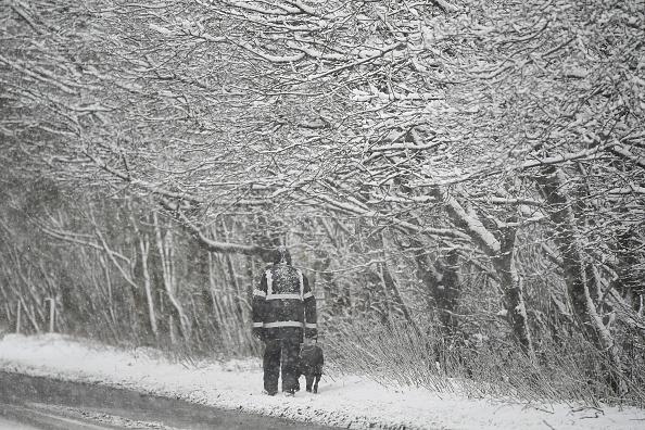 雪「Yellow Weather Warning For Scotland」:写真・画像(14)[壁紙.com]
