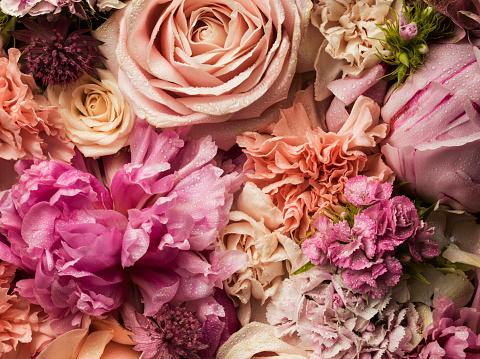 ピンク「Full frame floral arrangement with dew」:スマホ壁紙(19)