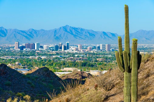 Valley「Phoenix skyline framed by saguaro cactus and mountainous desert」:スマホ壁紙(19)