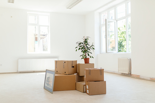 Cardboard Box「Moving in into new apartment」:スマホ壁紙(14)