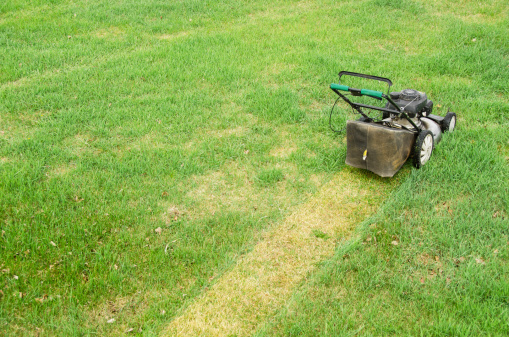 Lawn Mower「Lawn Mower and Spring Mowing」:スマホ壁紙(4)