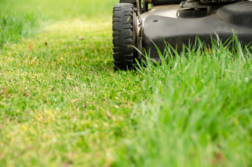 Mowing「Lawn Mower and Spring Mowing」:スマホ壁紙(17)
