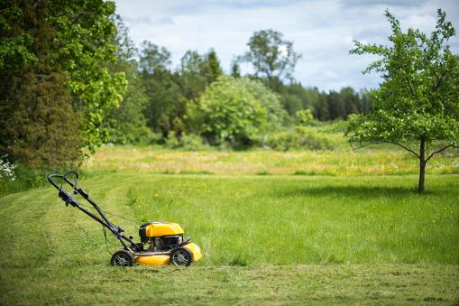 Gardening「Lawn mower in garden」:スマホ壁紙(0)
