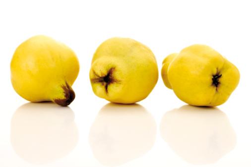 Quince「Quinces (Cydonia oblonga)」:スマホ壁紙(17)