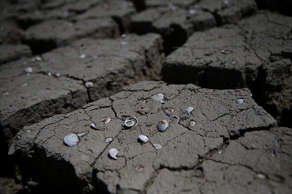 カリフォルニア州「California's Central Valley Heavily Impacted By Severe Drought」:写真・画像(16)[壁紙.com]