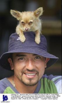 """Green Shirt「Cesar Millan """"Dog Whisperer""""」:写真・画像(11)[壁紙.com]"""