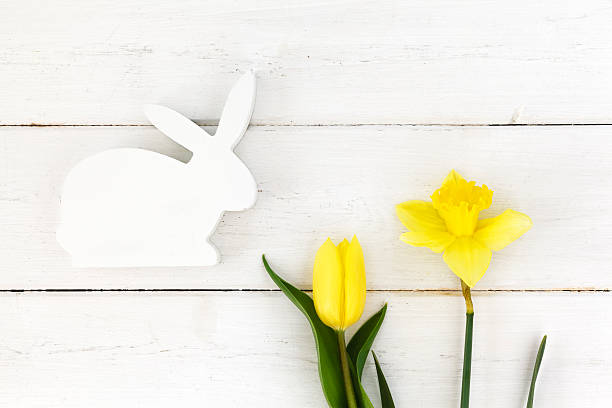 White wooden Easter bunny and yellow daffodil and tulip:スマホ壁紙(壁紙.com)