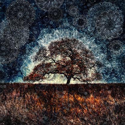 秋の風景 イラストのスマホ壁紙 検索結果 1 画像数9枚 壁紙 Com