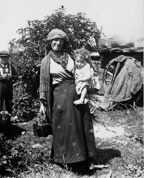 ジプシー「Epsom Gypsy」:写真・画像(13)[壁紙.com]