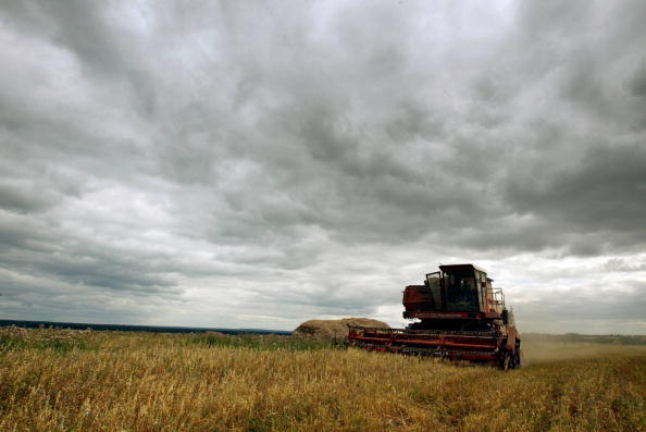 Farm「Russian Village Struggles With Agricultural Economy」:写真・画像(8)[壁紙.com]
