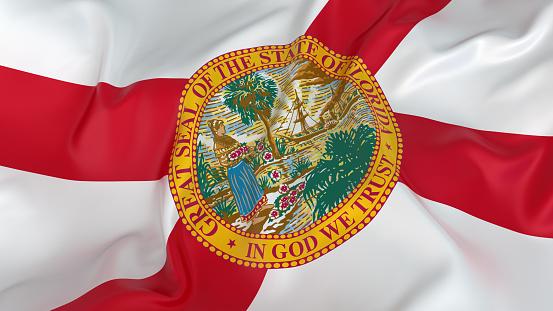 Patriotism「Majestic Flag of Florida」:スマホ壁紙(8)