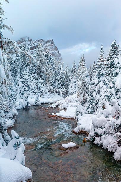 実装アシニボイン州立公園、カナダ:スマホ壁紙(壁紙.com)