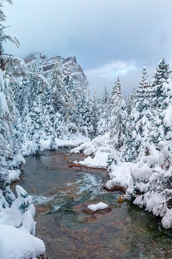 Mt Assiniboine Provincial Park「Mount Assiniboine Provincial Park in Canada」:スマホ壁紙(7)