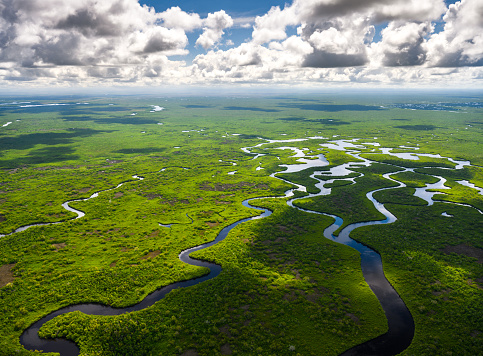 Gulf Coast States「Aerial view of Everglades National Park in Florida, USA」:スマホ壁紙(3)