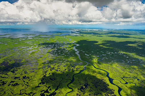 UNESCO「Aerial view of Everglades National Park in Florida, USA」:スマホ壁紙(16)