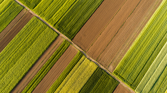 Slovenia「Aerial view of fields」:スマホ壁紙(3)