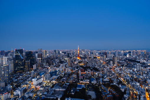 Tokyo Tower「Aerial view of Tokyo skyline at night」:スマホ壁紙(17)