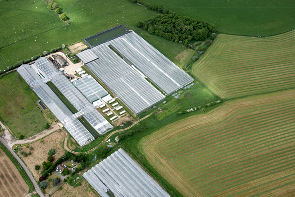 Greenhouse「Aerial view north east of green house, poly tunnel, fields, farm buildings north east of Tonbridge in Kent, UK」:写真・画像(4)[壁紙.com]