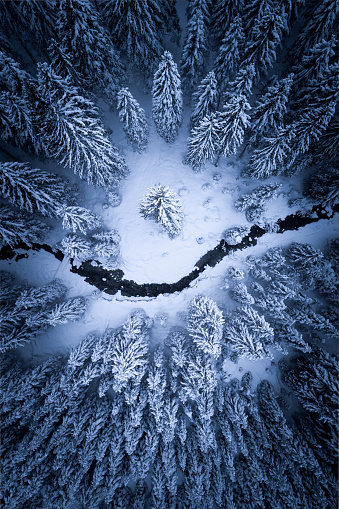 Austria「Aerial view of a river running through a winter forest, Zauchensee, Salzburg, Austria」:スマホ壁紙(7)