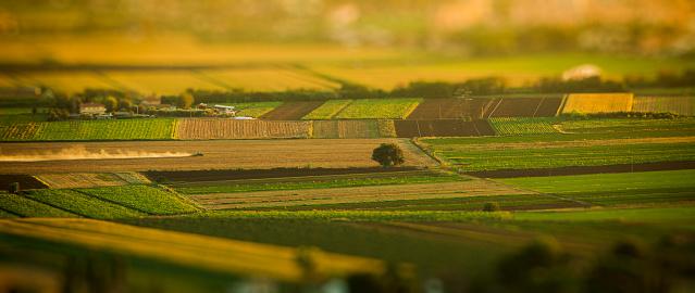 Tilt-Shift「Aerial view of country landscape」:スマホ壁紙(6)