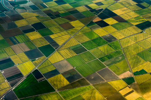 Patchwork Landscape「Aerial view of green fields」:スマホ壁紙(2)